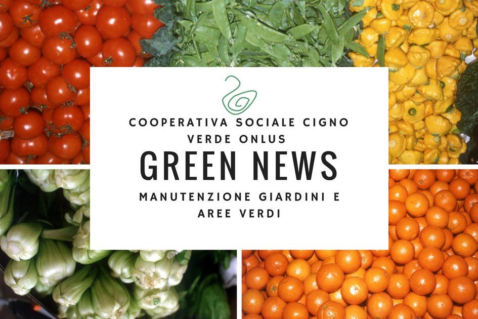 GREEN NEWS: la rubrica per gli appassionati del Verde!